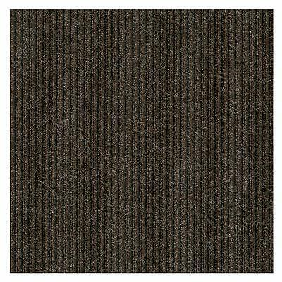 "Brown Indoor/Outdoor Carpet with a Non Backing 1/4"" Thick"