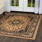 Home Dynamix Premium Traditional Oriental Area Rug
