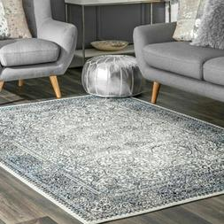 nuLOOM Transitional Delores Area Rug in Blue
